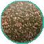 N-0163 Sagittarius